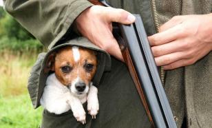 Собака расстреляла провинциального охотника из двустволки