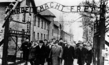 Правда об Освенциме: роль Польши