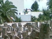 Детей в Карфагене приносили в жертву?