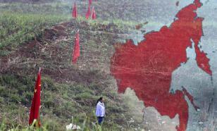 Власти хотят запретить Китаю скупать российский лес