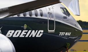 Эксперты: причиной крушения Boeing 737 могло стать столкновение с птицей
