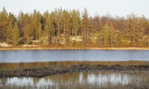 В Казани рыба переедет в новый водоем