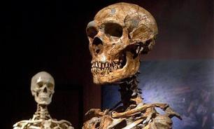 Краснодарские полицейские нашли в своем отделении человеческий скелет