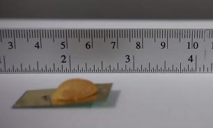 Ученые создали сверхпрочного робота-таракана