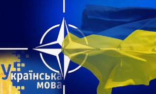 Бывший вице-премьер Украины: вступление в НАТО разорвет страну