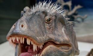Неизвестная рептилия, найденная в Бразилии, жила на Земле еще до динозавров