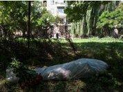 Украина: Маховик насилия раскручен