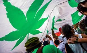 Правительство Канады приняло решение легализовать марихуану