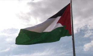 Что мы увидели и чего не увидели в Палестине