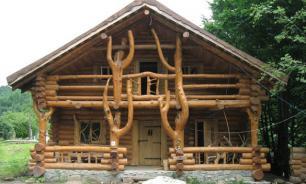 Ближе к природе: самые востребованные дома из дерева