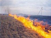 Весенние травяные палы сжигают Россию