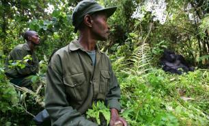 WWF обвинен в финансировании пыток и убийств браконьеров