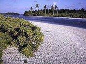 """Кирибати зарабатывает на """"всемирном потопе"""""""