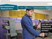 В Мурманской области открыли портал профориентации