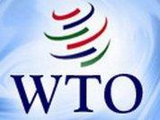 Наша страна поучится у старожилов ВТО