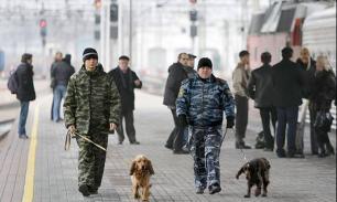 """МВД РФ призвало СМИ не разводить ''террористическую"""" панику"""