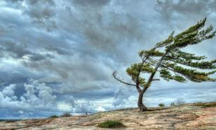 Имя ветра знали наши предки