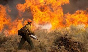 В России запрещено сжигать сухую траву