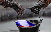"""Сколько каждый россиянин платит """"Роснефти"""" и BP?"""