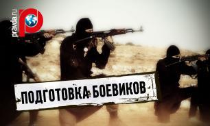 Руслан Бальбек: Украина готовит боевиков ИГИЛ