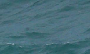 Атлантида была в Азовском море?