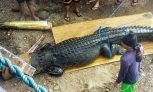 На Филиппинах поймали крокодила-убийцу