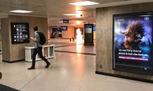 """""""Аллах акбар!"""" и взрыв: как в Брюсселе ликвидировали смертника"""