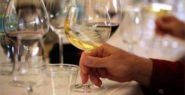 В США создали ГМО-вино, от которого нет похмелья