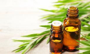 Природный антибиотик: масло чайного дерева