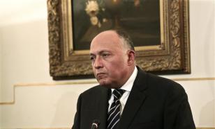 Глава МИД Египта: Россия нанесет смертельный удар по ИГИЛ