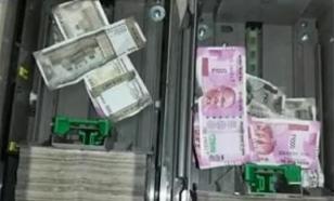 Крыса сгрызла в банкомате миллион рупий и умерла