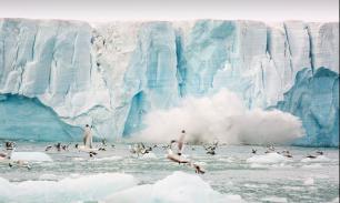 США и Россия столкнутся лбами в Арктике