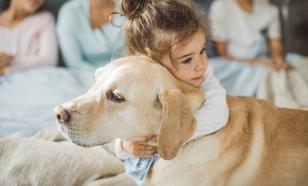 Пет-терапия: как животные помогают в реабилитации больных детей