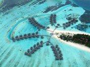 Мальдивы станут первой страной-заповедником