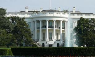 В Вашингтоне загадочно исчез саженец дуба, посаженный Макроном и Трампом