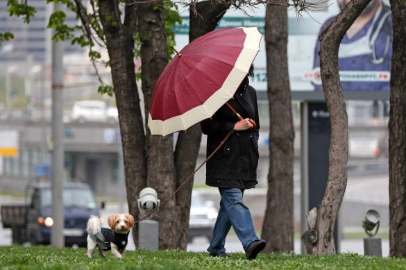 Москвичи стали медленнее идти на поправку при коронавирусе