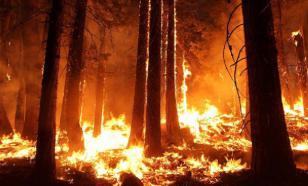 Квалификация Australian Open прервана из-за лесных пожаров