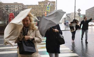 Жители Москвы пострадают от сильного ветра