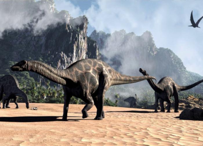 Бразильские палеонтологи впервые реконструировали мозг динозавра