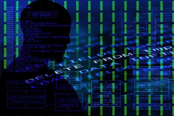В МВД заявили о нехватке средств на борьбу с IT-преступностью