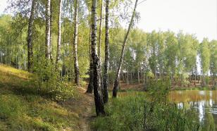 В Рязанской области создадут эколого-туристский кластер