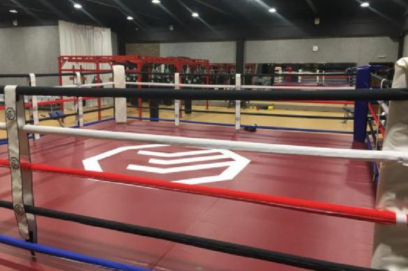 Федерация бокса России проверит случаи нарушения карантина спортсменами