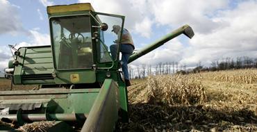 Тамара Гузенкова: Сельскому хозяйству Украины грозит катастрофа