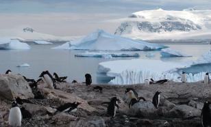 Таяние льдов в Антарктиде - практически необратимый процесс