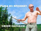 Вежливый ответ: Россия объявила контсанкции