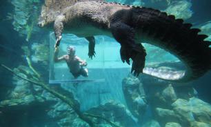 Отец спас сына от крокодила, укусив хищника за лапу