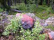 Карельские камни помнят юность Земли