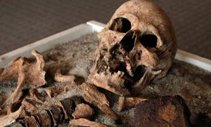 В Москве рабочие выкопали из-под асфальта скелет человека