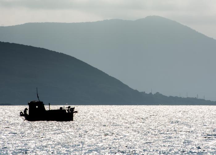 Рыбу с Камчатки готовы везти на хранение в Японию. Виноват Китай