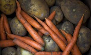 Морковь поможет от ожирения и импотенции